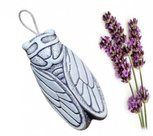 Geurende-Lavendel-cicade